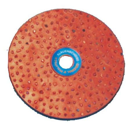 Klauenschleifscheibe Ø125 mm