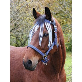 Fliegen-Fransenband (Pony)