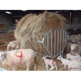 Râtelier Demi-Lune pour ovins