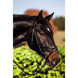 Bridon standard poney noir