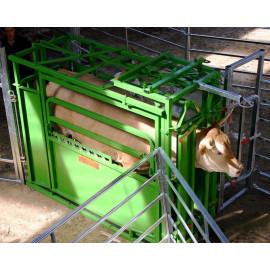 Cage de contention réglable en largeur PM 2800