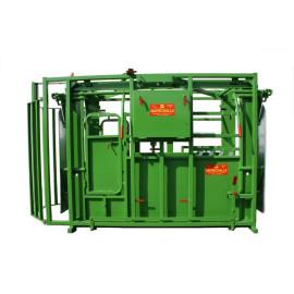 Cage de pesage hybride PM 1600 sur Cde