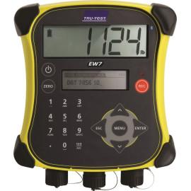 Indicateur digital PM 650